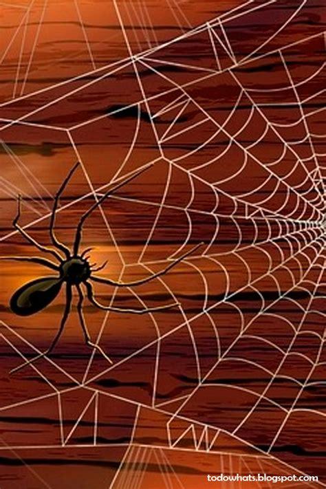 Imagenes Para Wasap De Halloween | todo para whatsapp fondos para whatsapp de halloween