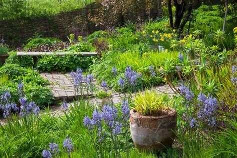 carol klein cottage garden carol klein never mind lawns go for something that s