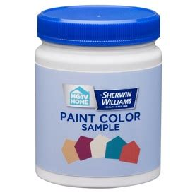 shop paint sles at lowes