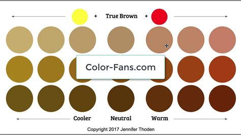 warm colors vs cool colors color theory warm brown vs cool brown