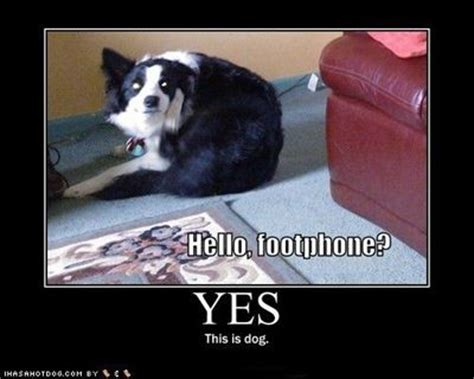 Dog Phone Meme - hello footphone yes this is dog internet memes
