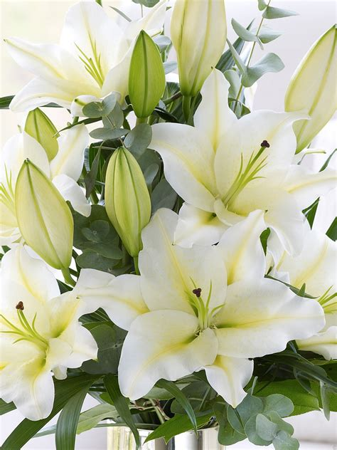 Vase Of Lilies White Scented Lily Vase