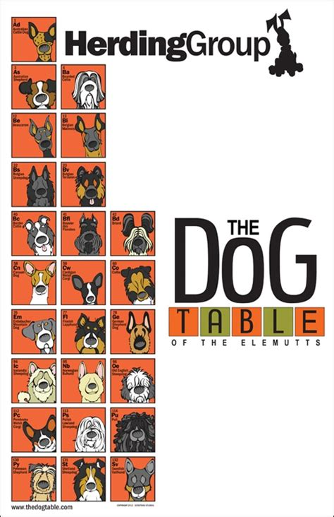 periodic table of dogs 34 best the table images on table