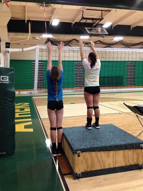 libero volleyball height 25 best ideas about volleyball net height on pinterest
