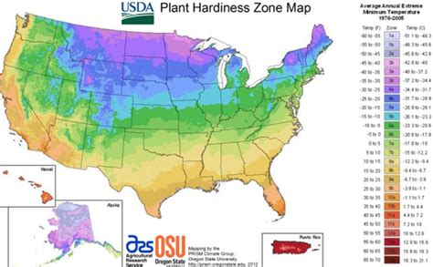 new usda plant hardiness zones of green gardens