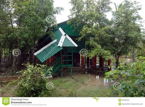 forest bungalow in west bengal forest bungalow editorial stock image image 26930459