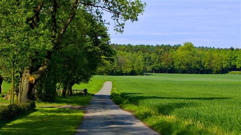 countryside road   summer day desktop wallpaper