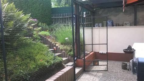 terrasse katzensicher katzennetz katzennetz ohne bohren katzennetz balkon