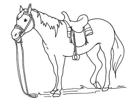 Coloring Pictures Of Real Horses | free and printable horse color pictures activity shelter
