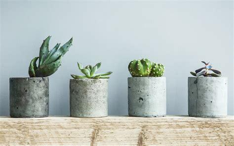 unique planters for succulents unique planters for succulents 28 images 125 best