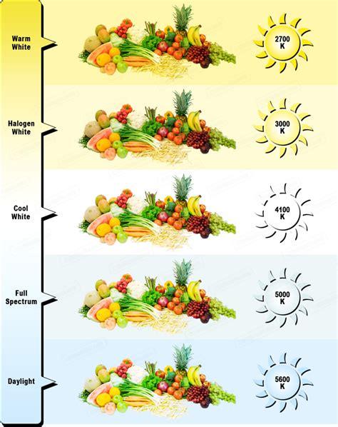 best light for vegetative growth cfl grow lights for vegetative growth a beginner s guide