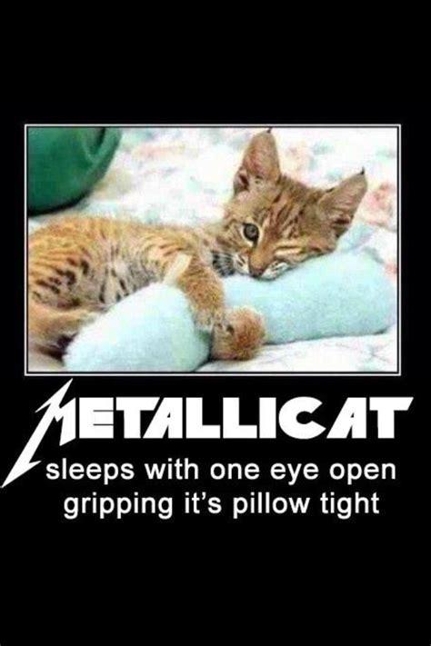 pin  sandi wooten  clever  funny memes heavy metal