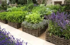 garten suchen gem 252 se und kr 228 uter garden and flowers pflanzen suchen