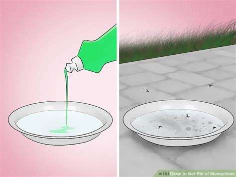 get rid mosquitoes backyard how to get rid of mosquitoes in backyard outdoor goods