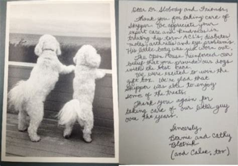 Thank You Letter Veterinary Meadowlands Veterinarian Center Veterinarian In Willoughby And Meadowlands Ohio Usa Thank