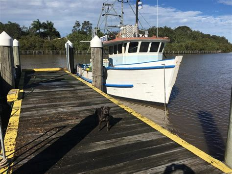 timber fishing boat for sale australia 1980 timber sharpie design for sale trade boats australia