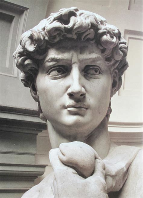 statue david head of david by michelangelo fine art pinterest