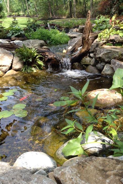 backyard streams backyard ponds with streams image mag