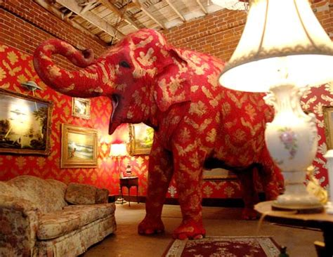 the pink elephant in the room banksy takes on chicago traveling with grace