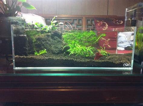 best fan for aquarium 17 best images about aqua tank on pinterest reptile