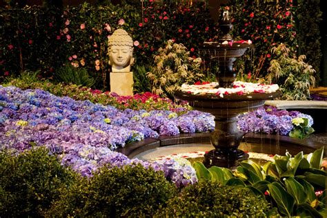 Flower Garden Show Chicago Flower Garden Show Things To Do In Chicago