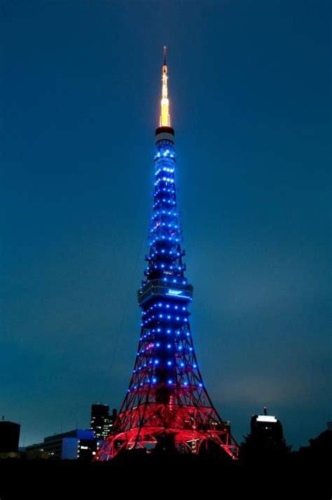 Home Aquarium by Tokyo Tower Official Tokyo Travel Guide Go Tokyo