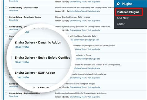 enfold theme gallery how to correct the conflict with enfold theme and envira s