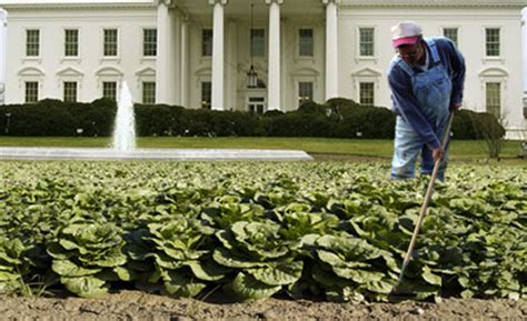 white house vegetable garden new appointment white house farmer updated fast company business innovation