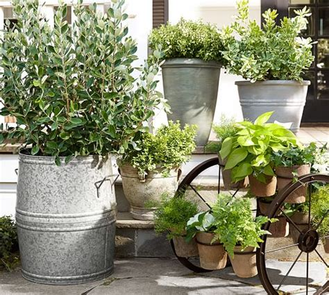 Pottery Barn Planters by Basile Planters Pottery Barn