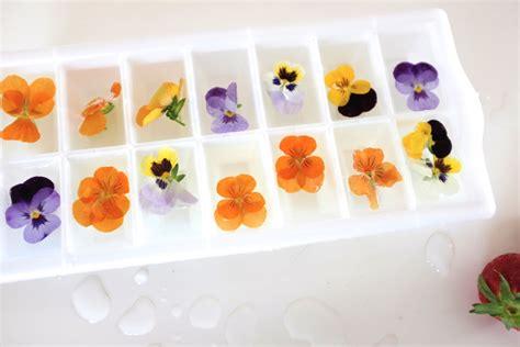 Wo Kann Decken Mit ã Rmeln Kaufen by Rosenspritzer Mit Flower Cubes At