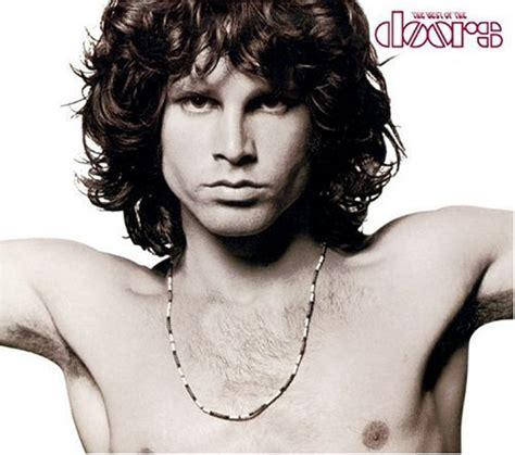 the doors best of album the doors the best of the doors album cover parodies