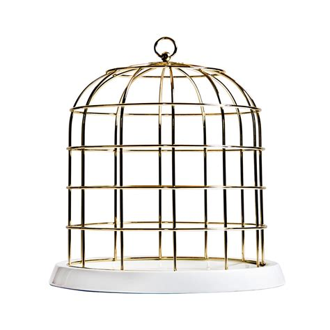 decorative bird cages ireland buy seletti twitable gold metal birdcage amara