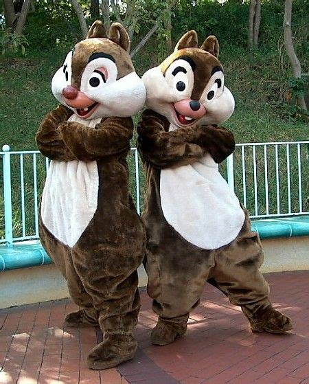 chip n dale costume chip and dale costumes chip dale pinterest disney