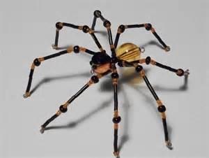 Garden Spider Illinois Large Beaded Orange Black Garden Spider Spider