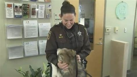 wral puppies deputy adopts a that she saved from a horribly neglectful owner dogtime