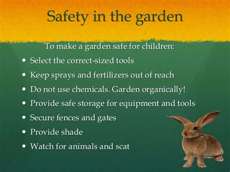 keep animals out of garden