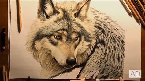imagenes realistas y no realistas wikipedia dibujo de lobo realista a lapiz como dibujar un lobo y
