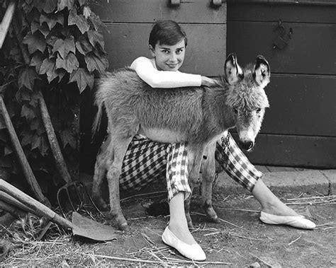 fuji photography blog dave young fotografia rare photos of audrey hepburn that capture her iconic