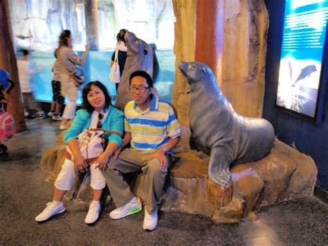 Pompa Aquarium Yang Kencang catatan ardi s family wisata quot uwung uwung quot di dubai aquarium