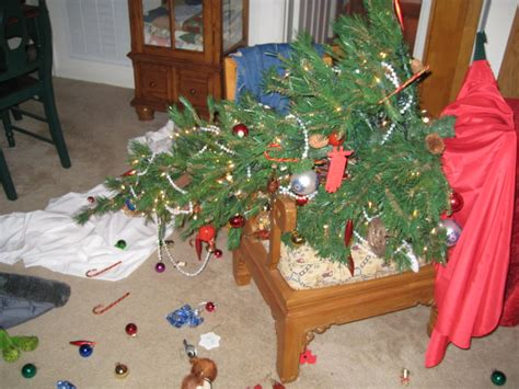 christmas tree disaster onespoiledcat