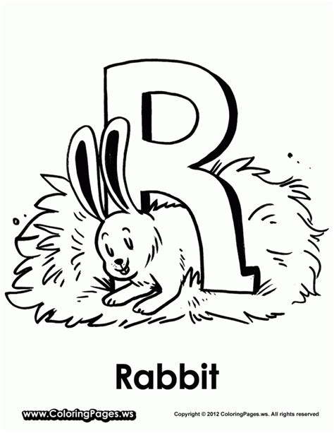 bunny coloring pages realistic realistic rabbit coloring pages az coloring pages