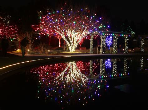 trail of lights denver botanic gardens at chatfield