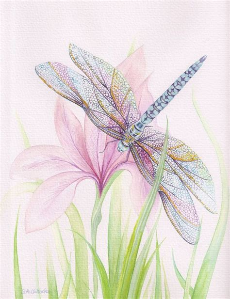 25 best ideas about dragonfly art on pinterest