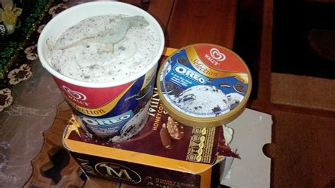Freezer Es Krim Walls menggelikan ada cicak beku di kemasan es krim tersegel