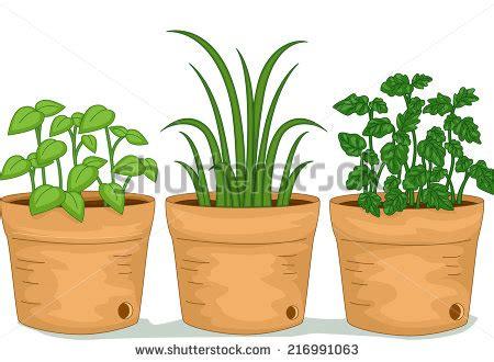 herb garden clipart clipground