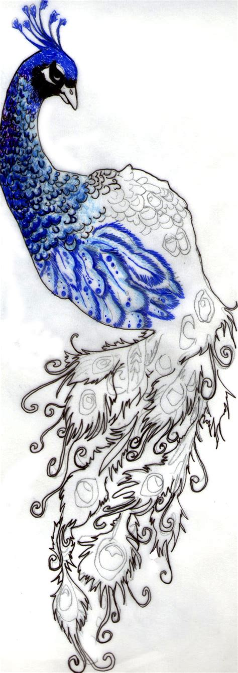 peacock tattoos designs peacock tattoos designs ideas and meaning tattoos for you