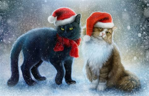 new year animals wallpapers wallpaper cats two winter hat pictorial animals