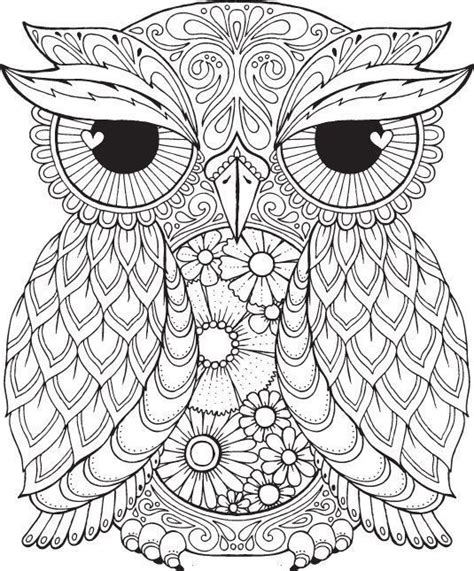 intricate owl coloring pages 17 b 228 sta bilder om coloring pages free downloads and