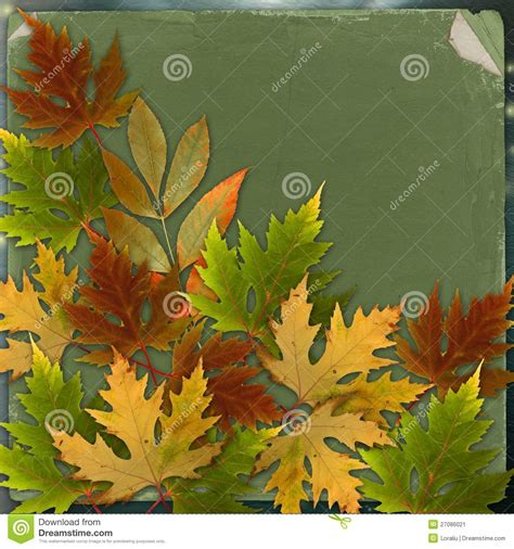 autumn background with foliage and grunge paper stock