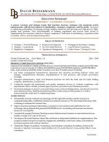 Resume Executive Summary Exle how to write a executive summary resume writing resume sle writing resume sle